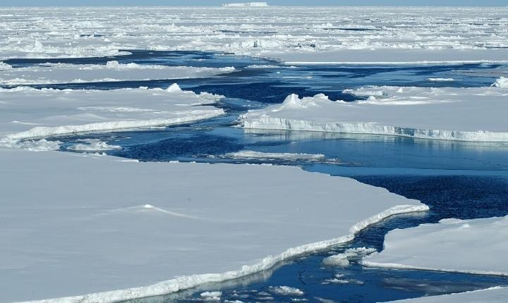 Thick arctic sea ice has nearly all disappeared