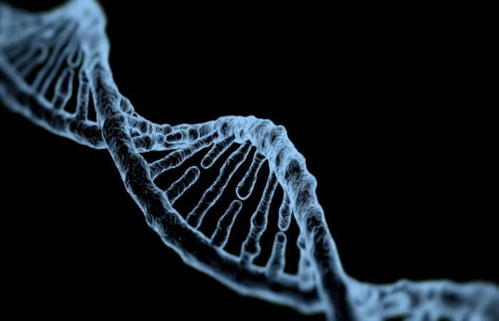 Scientists solidify the existence of a new DNA structure in human cells