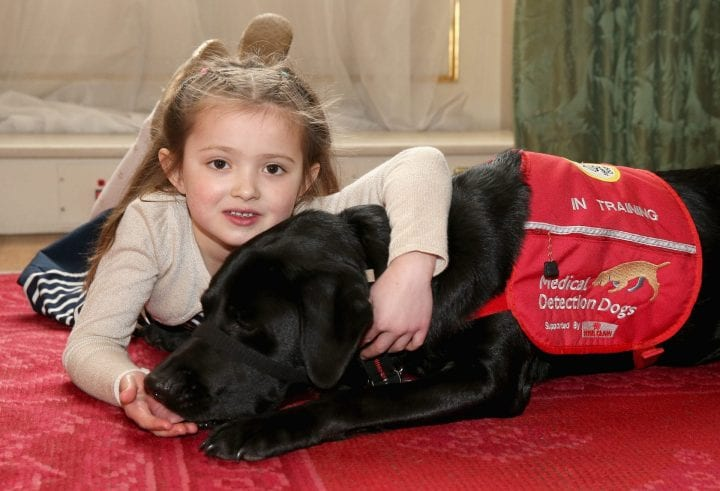 Girl cancer detecting dog
