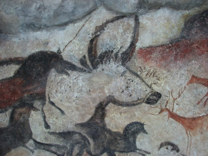 a painting on a cave wall of a cow or something