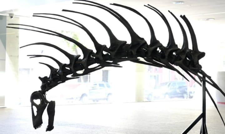 Awesome new dinosaur discovered with Mohawk of spikes