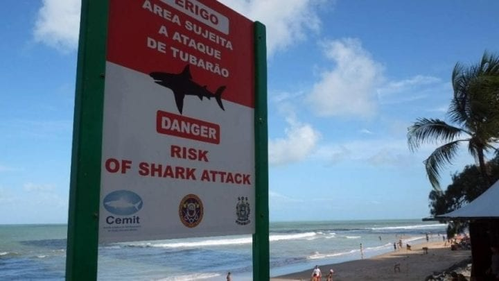 sign showing danger of shark attacks