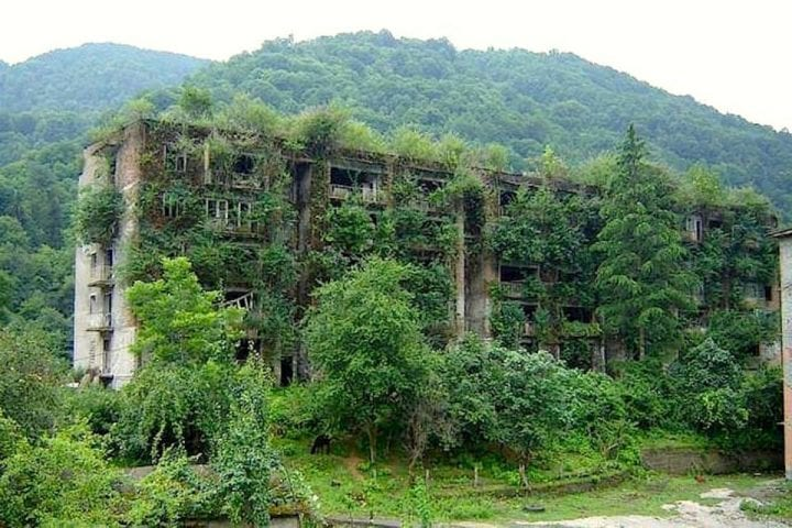 an overgrown building