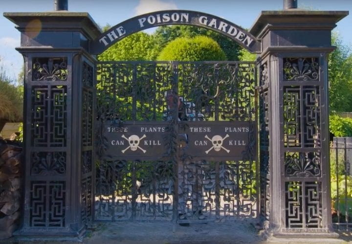 picture of gates with deadly plants inside