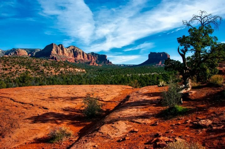 the sedona desert