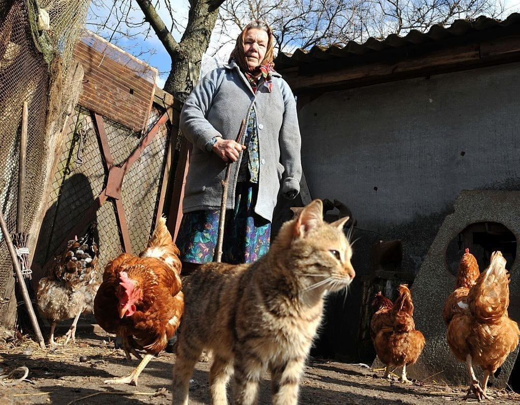 Maria Semenyuk,73 feeds hens at her house in the largely abandoned village of Paryshiv, within the 30km exclusion area around the Chernobyl Nuclear Power Plant on March 23, 2011. The couple are some of the 300 people, the majority of whom are elderly who returned to live within the exclusion zone following the disaster.