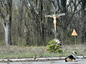 A dog is seen next to a sign of radioactivity set in front of a crucifix in the ghost city of Prypyat near Chernobyl Nuclear Power Plant.