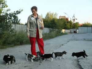 Marie-Louise Chenery, volunteer with The Dogs of CHORNOBYL initiative, tends to stray puppies near the Chernobyl nuclear power plant.