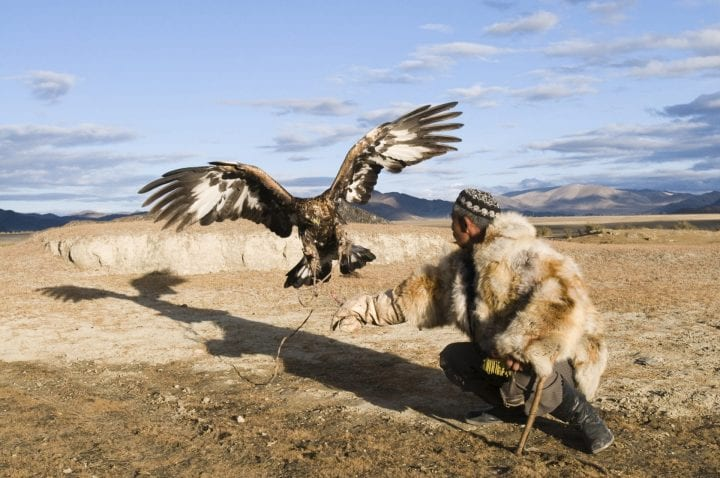 Dalai Han an Kazakh eagle hunter with his Golden Eagle, Bayan-Ulgii, in Altai Mountains western Mongolia. (Photo by: Education Images/Universal Images Group via Getty Images)
