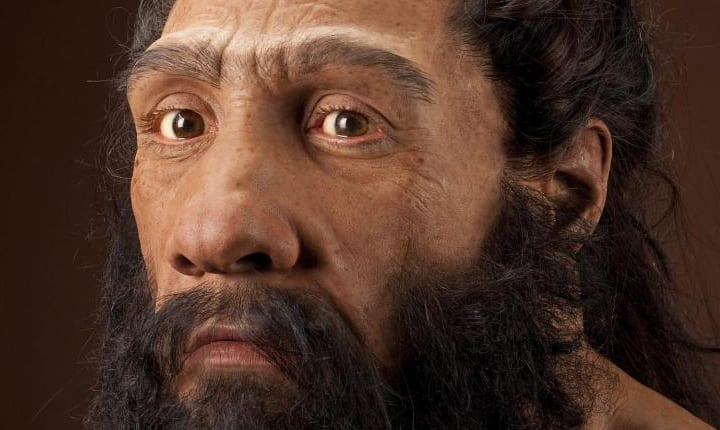 Neanderthals May Have Been A Lot Smarter Than We Thought