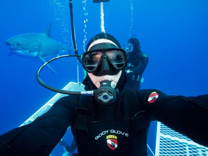 Photographer David Fleetham clicks a selfie before entering the cage with a great white shark in the background on September, 01, 2015 near Guadalupe Island, Mexico. Great white sharks emerge from the water with their jaws open in the clear blue waters of the Pacific Ocean. The incredible animals were photographed off the the coast of Guadalupe Island- a small volcanic island roughly 150 miles off the coast of Mexico's Baja California peninsula. There is thought to be roughly 170 great white's near the island- making it one of the best places in the world for divers to spot them.