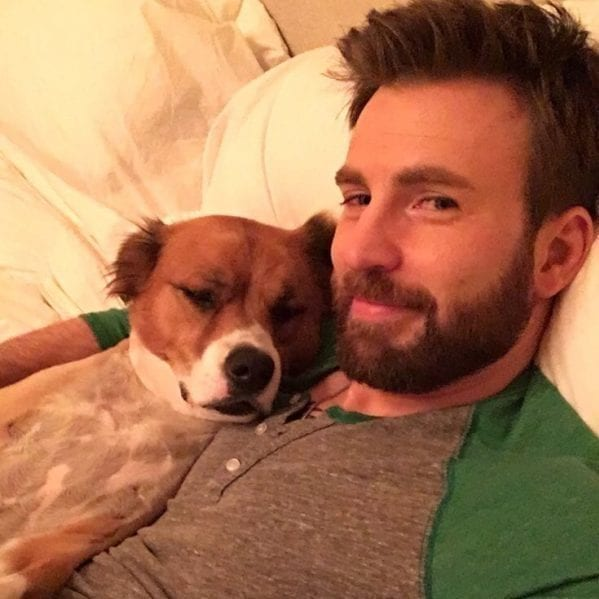 Celebrities who could not part with their adorable animal co-stars