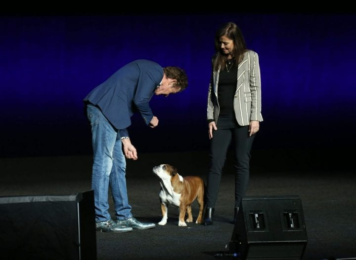 LAS VEGAS, NEVADA - APRIL 03: Actor Dennis Quaid (L) interacts with a bulldog named Daisy as director Gail Mancuso looks on during Universal Pictures special presentation during CinemaCon at The Colosseum at Caesars Palace on April 03, 2019 in Las Vegas, Nevada. CinemaCon is the official convention of the National Association of Theatre Owners. (Photo by Gabe Ginsberg/WireImage)