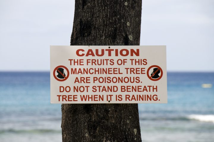 Warning sign about the Manchineel tree