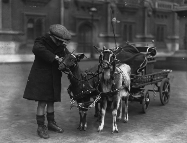 1926: A young boy with his two goats pulling a cart. (Photo by Fox Photos/Getty Images)