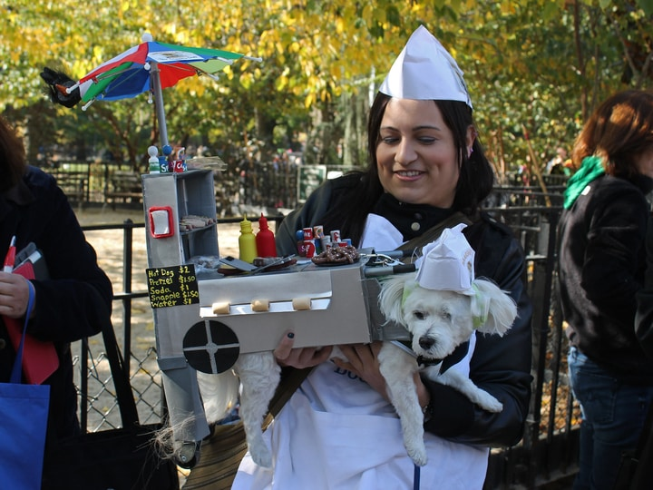 Hot dog stand halloween dog costume parade