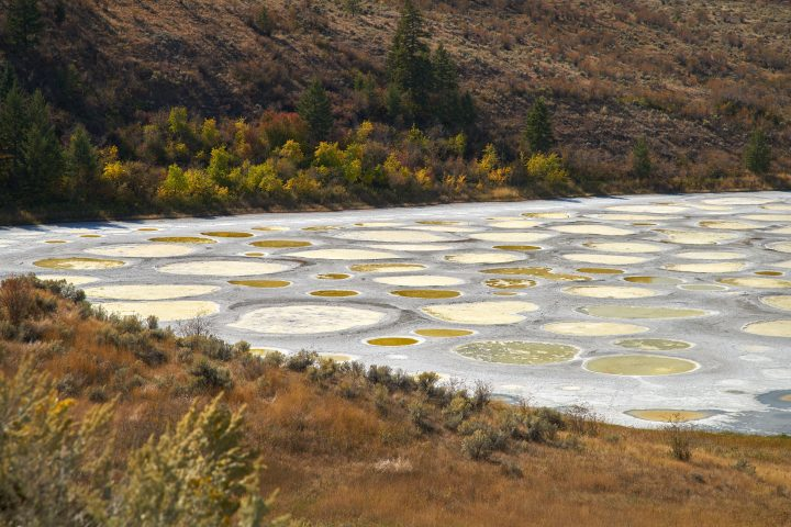 The Spotted Lake near Osoyoos Canadais a saline alkali lake that creates the circles when it dries out in the summer.