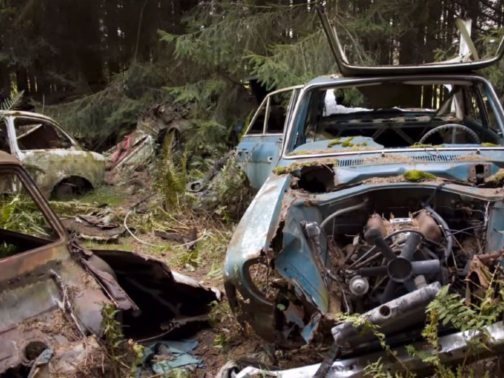 Chatillon Car Graveyard, weeds in cars, overgrown